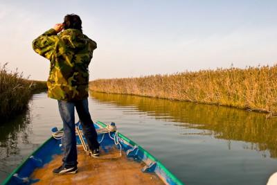 birdwatching delta del Po