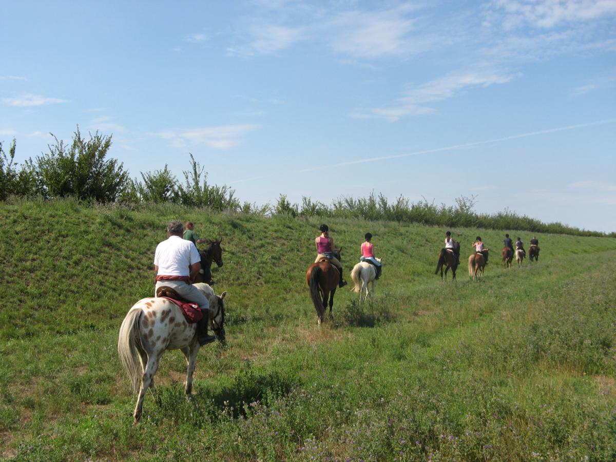 escursioni a cavallo delta del po