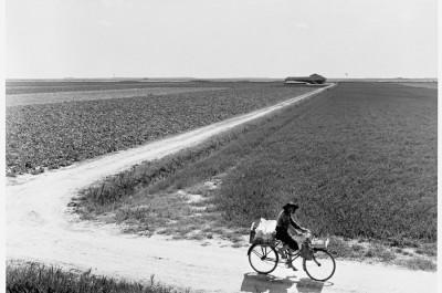 Delta del Po anni 50