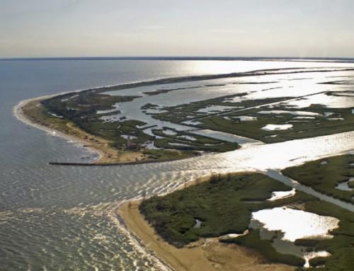 Nasce il progetto Eridano per valorizzare il Delta Del Po