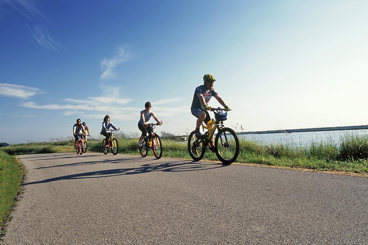 delta del po in bici