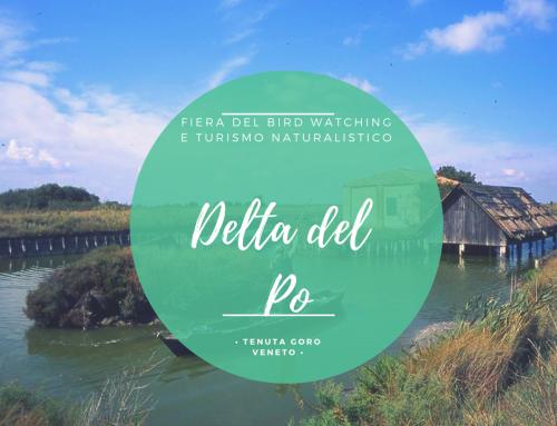 LA FIERA DEL BIRDWATCHING E DEL TURISMO NATURALISTICO NEL DELTA DEL PO