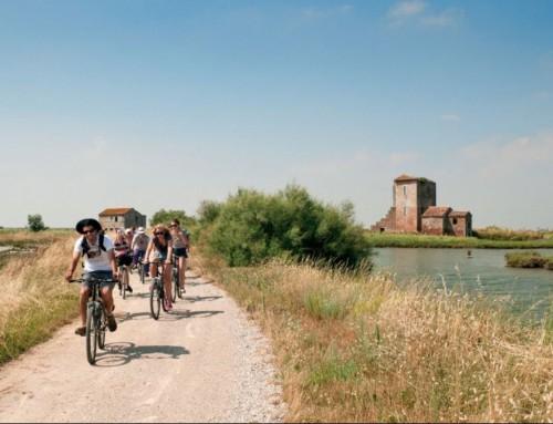 Delta del Po: 5 passeggiate in bicicletta da non perdere