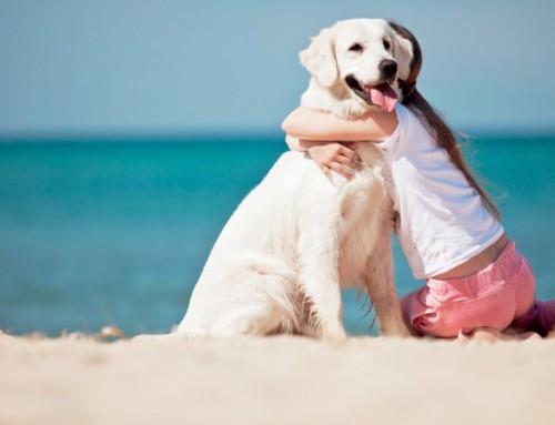 Vacanze estive sul Delta del Po? non perderti le migliori spiagge!
