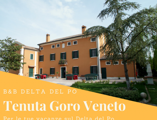B&B DELTA DEL PO: IL CASTELLO DELLA MESOLA