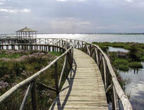 Vacanza sul Delta del Po? ecco cosa visitare e qualche notizia utile!